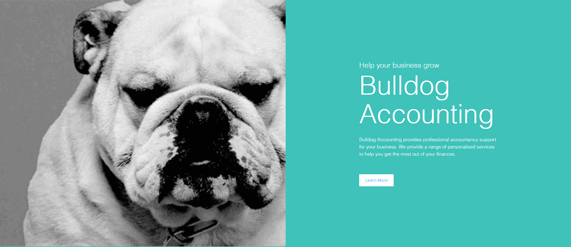 Bulldog Accounting Branding 1