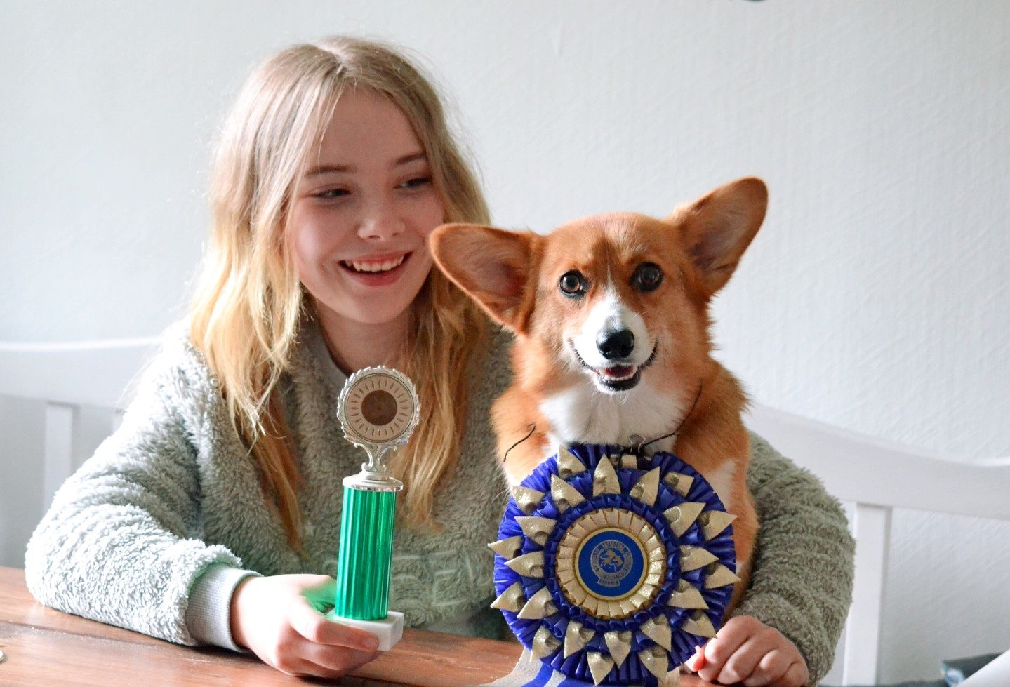 Funny Awards Feature Picture